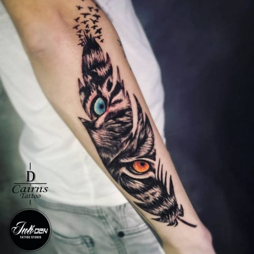 tigers eyes within a feather